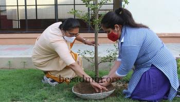 Plantation Drive -World Environment Day on